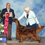 Sporting Dog Fanciers of So Calif 05/2019