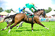24  March, 2012:  UNION ARMY and AIR MAGGY go toe to toe for second place in the Celebrate Aiken Allowance Hurdle.