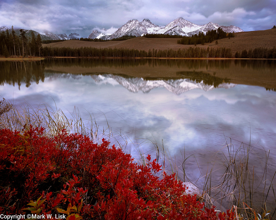 Fall foliage turns bright red in the cool fall temperatures at Little Redfish Lake in the Sawtooth National Forest.