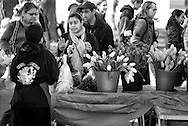 .The first day of the Dane County Farmers Market was held Saturday April 21, 2012 on the Capitol Square in Madison.
