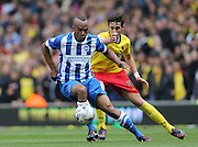 Chris O'Grady during the Sky Bet Championship match between Brighton and Hove Albion and Watford at the American Express Community Stadium, Brighton and Hove, England on 25 April 2015.