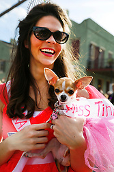 27 Jan 2013. New Orleans, Louisiana USA. .The Mystic Krewe of Barkus. Ellen Dodge and Maggie the Chihuahua. Following the theme 'Here Comes Honey Bow Wow,' the parade parodies a popular media title as dogs and their owners parade through the French Quarter in one of the most irreverent parades of the season..Photo; Charlie Varley