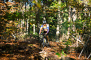 Bij Austerlitz rijdt een man op een mountainbike door de bossen op een mooie herfstdag.<br /> <br /> A man on a mountain bike enjoys the beautiful autumn weather in the woods near Austerlitz.