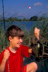 Stock photo of a young boy holding a perch that he just caught