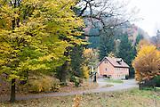 Zeughaus, Großer-Tzschandbach-Tal, Kirnitzschtal, Herbstwald, Sächsische Schweiz, Elbsandsteingebirge, Sachsen, Deutschland | Zeughaus, Großer-Tzschandbach-Valley, Kirnitzsch valley, autumn, Saxon Switzerland, Saxony, Germany