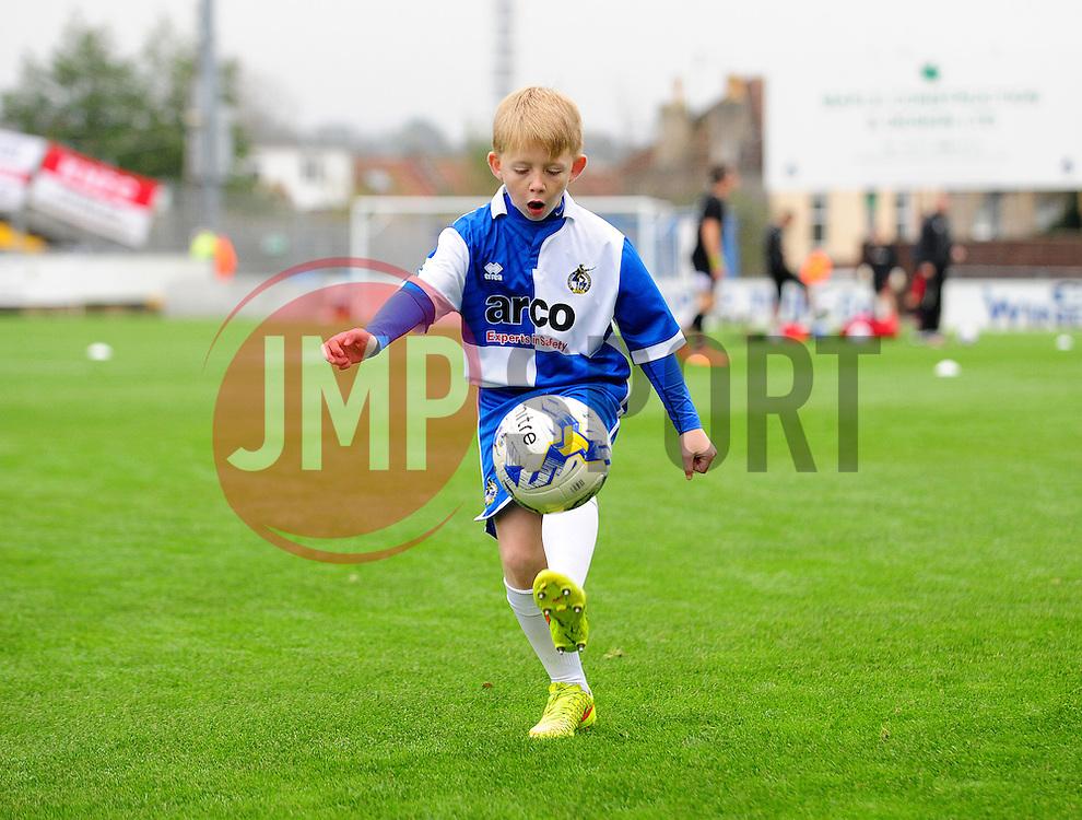 Mascot - Photo mandatory by-line: Neil Brookman/JMP - Mobile: 07966 386802 - 15/11/2014 - SPORT - Football - Bristol - Memorial Stadium - Bristol Rovers v Kidderminster - Vanarama Football Conference