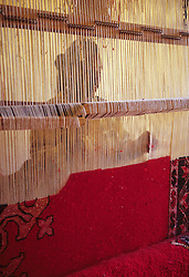 Africa, Morocco, Ouarzazate, woman weaving Berber wool carpet, viewed through loom