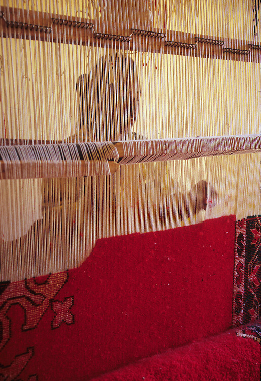 Africa, Morocco, Ouarzazate, woman weaving Berber wool carpet, viewed through loom