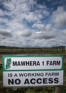 Mawhera - Pre Field Day