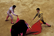 A bullfight in the Plaza de Toros, Bogota.The matador is on the right.On the left is a bandillero.