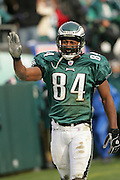 16 Jan 2005: Freddie Mitchell of the Philadelphia Eagles after catching a fumble from L. J. Smith during the Philadelphia Eagles 27-14 victory over the Minnesota Vikings at Lincoln Financial Field in Philadelphia, PA. <br /> <br /> Mandatory Credit:Todd Bauders/ContrastPhotography.com