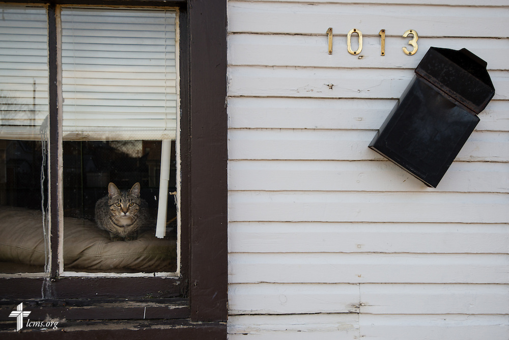 "A cat sits in a window at a home near Emmanuel Lutheran Church as volunteers and members rehab a vacant and abandoned home adjacent to the church on Saturday, April 12, 2014, in Ft. Wayne, Ind.  The rehab is part of the ""Helping Hand""  initiative from the LCMS National Housing Support Corporation (NHSC) and a coalition of church partners, including Redeemer Lutheran, Emmanuel Lutheran, Zion Lutheran, and St. Peter's Catholic. The initiative is a multi-neighborhood safe housing and repair effort that plans to support nine low-income and/or elderly homeowners. LCMS Communications/Erik M. Lunsford"