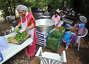 WATFORD HERTFORDSHIRE: Women prepare some of the 60thousand meals handed out free to visitors. Over 55,000 pilgrims and guests visit the Largest Hindu Festival in Europe at Bhaktivedanta Manor Krishna Temple near Watford on Sunday 5th September to celebrate Janmashtami the birth of Lord Krishna. The Manor was donated to the Hare Krishna Movement in the early 1970s by former Beatle George Harrison. 03 SEPT 2010. STEPHEN SIMPSON ..
