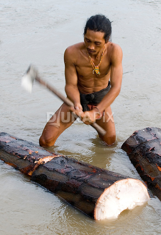 Teu Paksa of Malagassat village, Siberut Island, chops sago in the river. Sago a staple food for traditional Mentawai people.