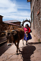 TAQUILE, PERU - CIRCA OCTOBER 2015: Woman with cattle at the Local market in the Island of Taquile in Lake Titicaca.