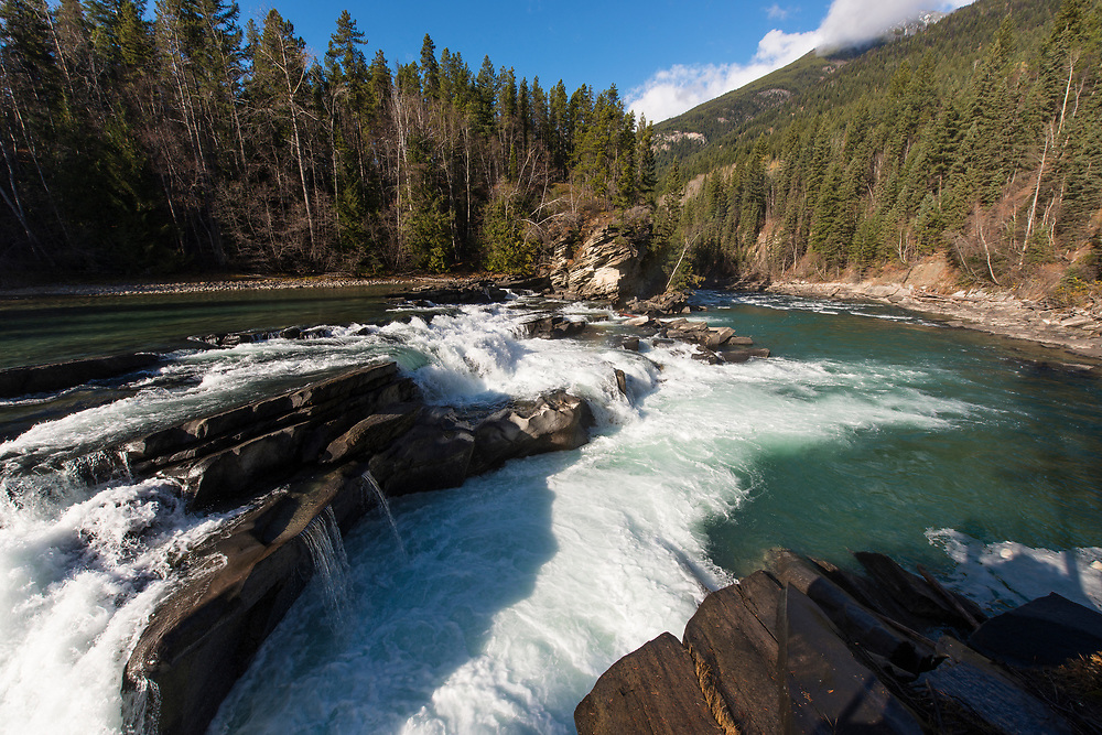 Rearguard Falls Provincial Park. Located along the Yellowhead Highway just South of Mt Robson Provincial Park, this is the farthest upstream that Salmon can travel during their spawning migration up the Fraser River system. 1200 kilometres upstream from the Fraser River Estuary, only the largest and strongest of the Chinook Salmon - the largest species of Pacific salmon - can make it this far. The proposed Kinder Morgan Trans Mountain pipeline would run within perhaps one kilometre of the Fraser River here.