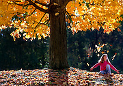 """( 5 COL X 7"""" DEEP) David J. Rogowski photo from October 1995.     Kristin Wilke (who was 8 in 1995) plays in the bright autumn leaves in Schenectady's Central park 10/11/95."""