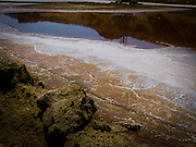 Israel, Dead Sea salt marsh