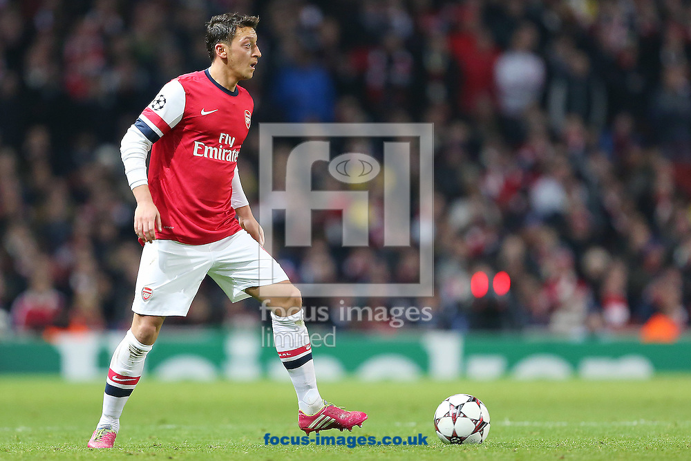 Picture by Richard Calver/Focus Images Ltd +447792 981244<br /> 26/11/2013<br /> Mesut Ozil of Arsenal during the UEFA Champions League match against Olympique de Marseille at the Emirates Stadium, London.