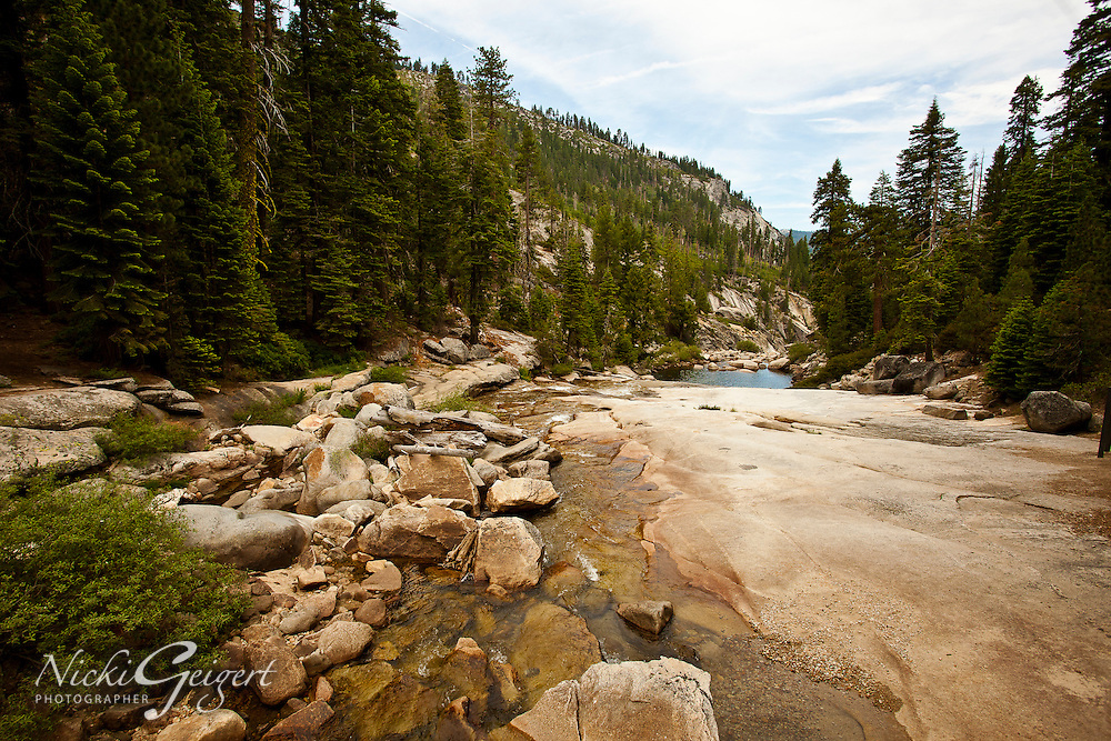 Riverbed at low water running through a pine forest valley, Yosemite. Landscape and nature photography wall art for sale. Fine art photography prints, stock image.