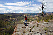 Craig Allen, a research ecologist with the U.S. Geological Survey, looks over an area in the Santa Fe National Forest near Bandalier National Monunemt in New Mex. on September 7, 2015, that remains scarred after being devastated by the Las Conchas Fire. The wildfire, which began on June 26, 2011, is the largest wildfire in New Mexico state history and burned over 156,000 acres, some of which had been burned in the 1996 Dome Fire and the 2000 Cerro Grande Fire. The forest saw such devastation that many parts of the Ponderosa Pine forest are not recovering.