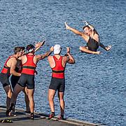 University Championships (NZL)