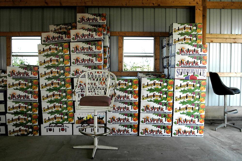 Vente à la ferme, famille Amish, Missouri, USA.