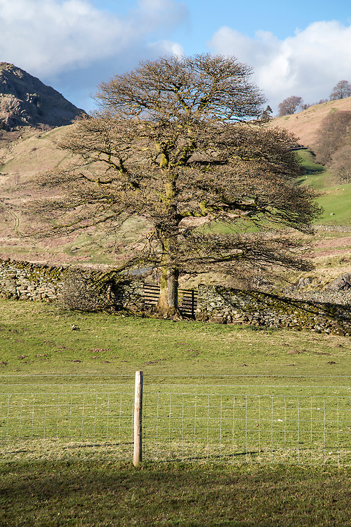 The Langdale Valley in the English Lake District