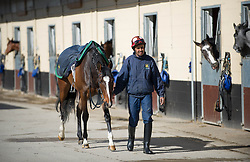 © Licensed to London News Pictures. 22/03/2014<br /> <br /> Middleham, North Yorkshire<br /> <br /> A horse and rider walk out prior to morning exercise at the Mark Johnston stables in Middleham, North Yorkshire. Race horses have been trained in Middleham for over 200 years using the extensive gallops on the high moor. There are currently 15 stables based around the small Yorkshire village.<br /> <br /> Photo credit : Ian Forsyth/LNP