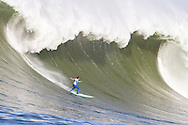 2nd place finisher Shane Desmond surfs a giant wave in the second heat of the 2010 Mavericks Surf Contest held in Half Moon Bay, California on February 13, 2010