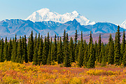 Scenic view of the west side of Mt. McKinley as seen from the Parks Highway, Denali National Park and Preserve, Interior Alaska, Autumn