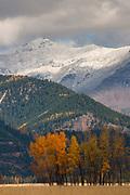 Blackfoot Valley, Montana