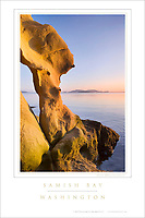 Samish Bay Washington Poster