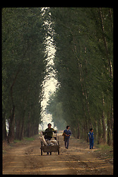 Farmers wheel a push cart down a rural road outside of Beijing, China.