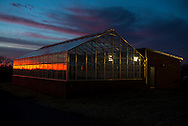 Research greenhouses located on Oklahoma States campus.