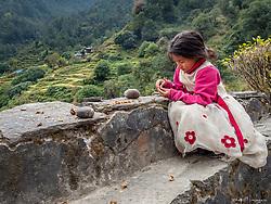 Girl shelling walnuts.  Annapurna Circuit, Nepal.