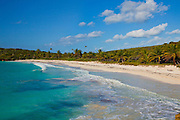 Playa Navio on the Caribbean Island of Vieques, Puerto Rico