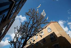 UK ENGLAND LONDON 22MAR14 - Residential housing in Whitechapel, London's east end.<br /> <br /> jre/Photo by Jiri Rezac<br /> <br /> &copy; Jiri Rezac 2014