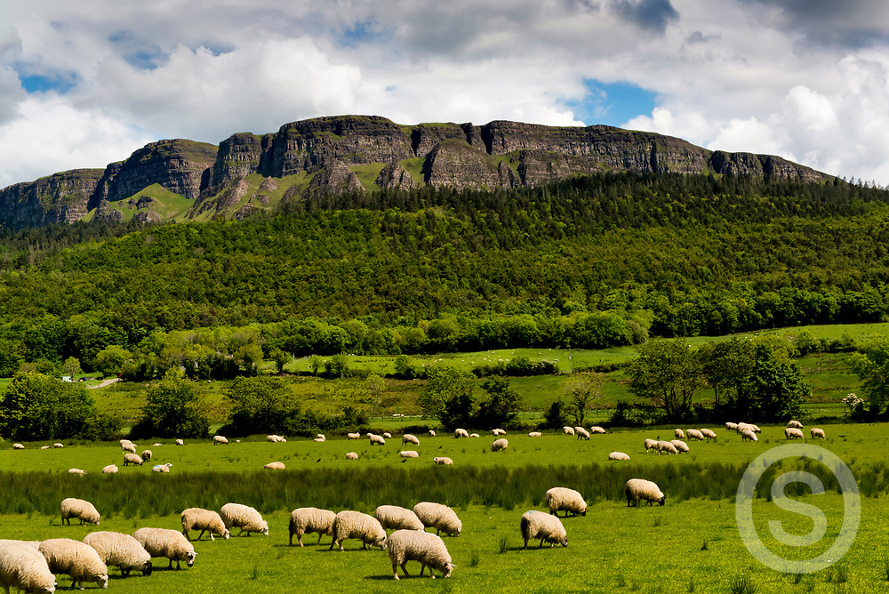 Photographer: Chris Hill, Binevenagh, County Derry / Londonderry