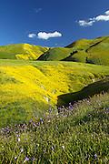 Scenic Central Valley California