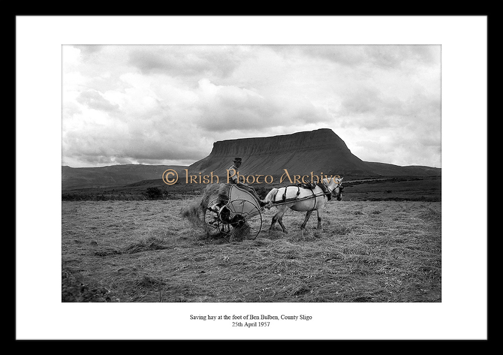 Great picture of Irish landscape by Lensmen Photographic Agency. Irish countryside pictures are the perfect gift for someone that is interested in the beautiful scenery of Ireland.