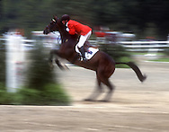 The Georgia International Horse Park is located in Conyers, Georgia, United States, 30 miles east of Atlanta. During the 1996 Summer Olympics, which ran from July 19 to August 4, over 600,000 people visited the track to witness events in equestrian, mountain biking, and the riding and running portions of the modern pentathlon events.