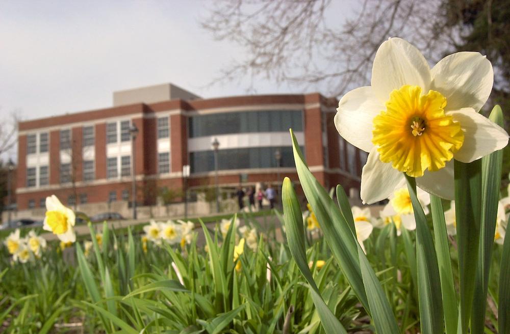 16370Spring Campus Shots 4/6/04