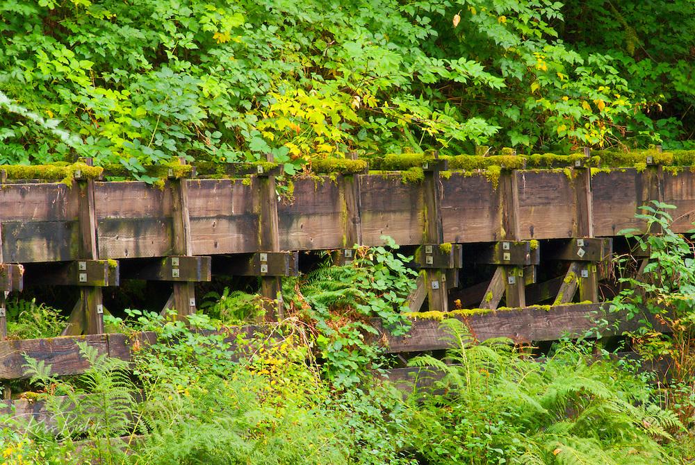 Flume at Cedar Creek Grist Mill, Clark County, Washington