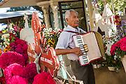 An elderly man plays the accordion at a gravesite in honor of the dead at the San Antonino Castillo cemetery during the Day of the Dead Festival known as Día de Muertos on November 3, 2013 in San Antonino Castillo Velasco, Oaxaca, Mexico.