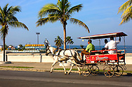 Horse and wagon in Cienfuegos, Cuba.