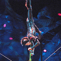 The cast of Cirque du Soleil perform  under the Grand Chapiteau (big top) during dress rehearsal of OVO at the Santa Monica Pier on  Thursday, January 19, 2012.....