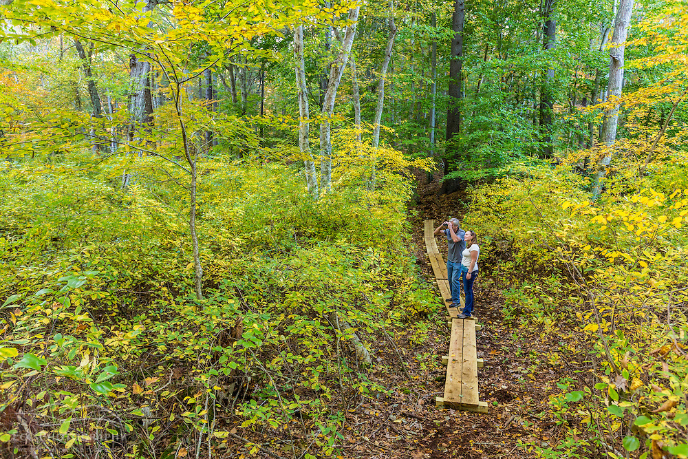 A man and woman bird watching in a forest in Marshfield, Massachusetts. Hoyt-Hall Preserve.