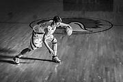 2007-2008 LCCC Men's Basketball