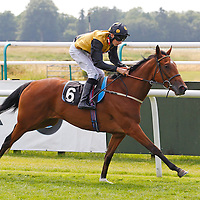 Miss Tiger Lily and Luke Morris winning the 3.00 race